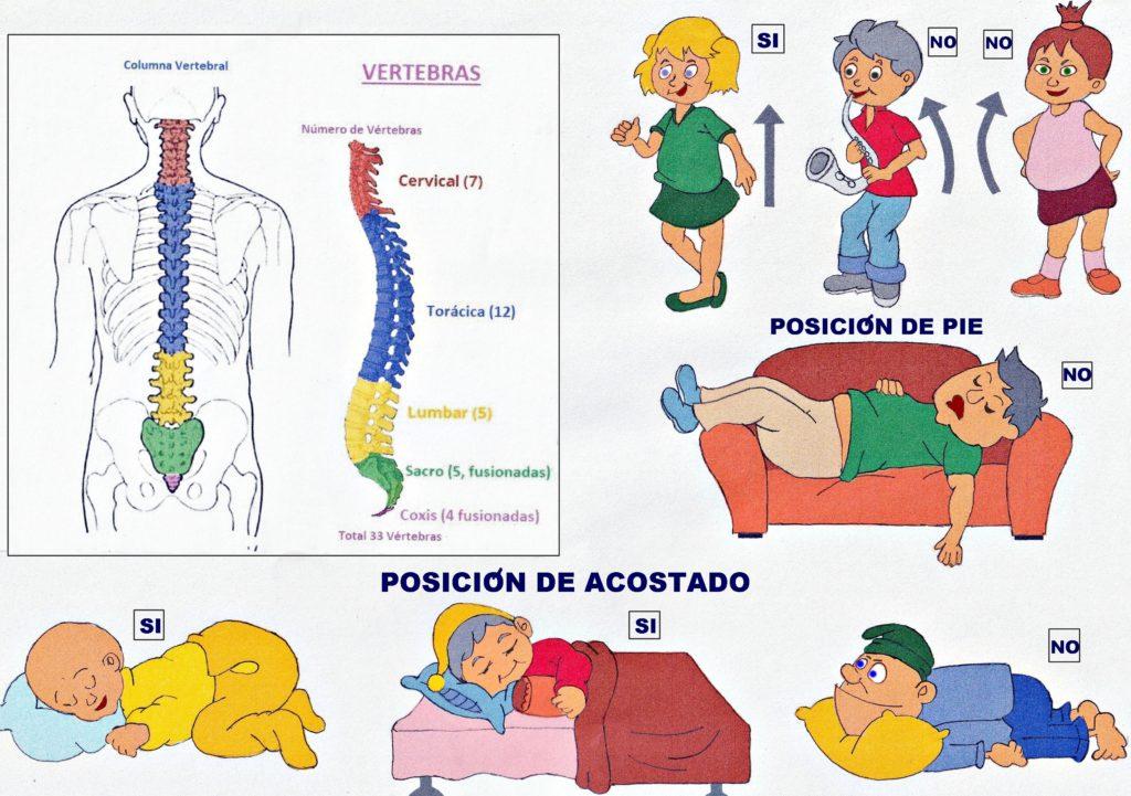 Higiene postural con la POSICION DE PIE Y ACOSTADO