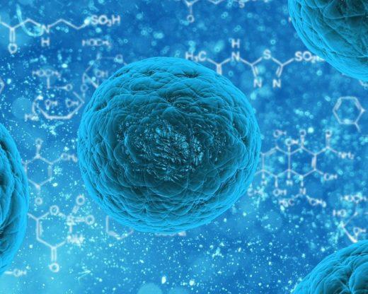 Aumentar el Sistema Inmunológico con Acupuntura