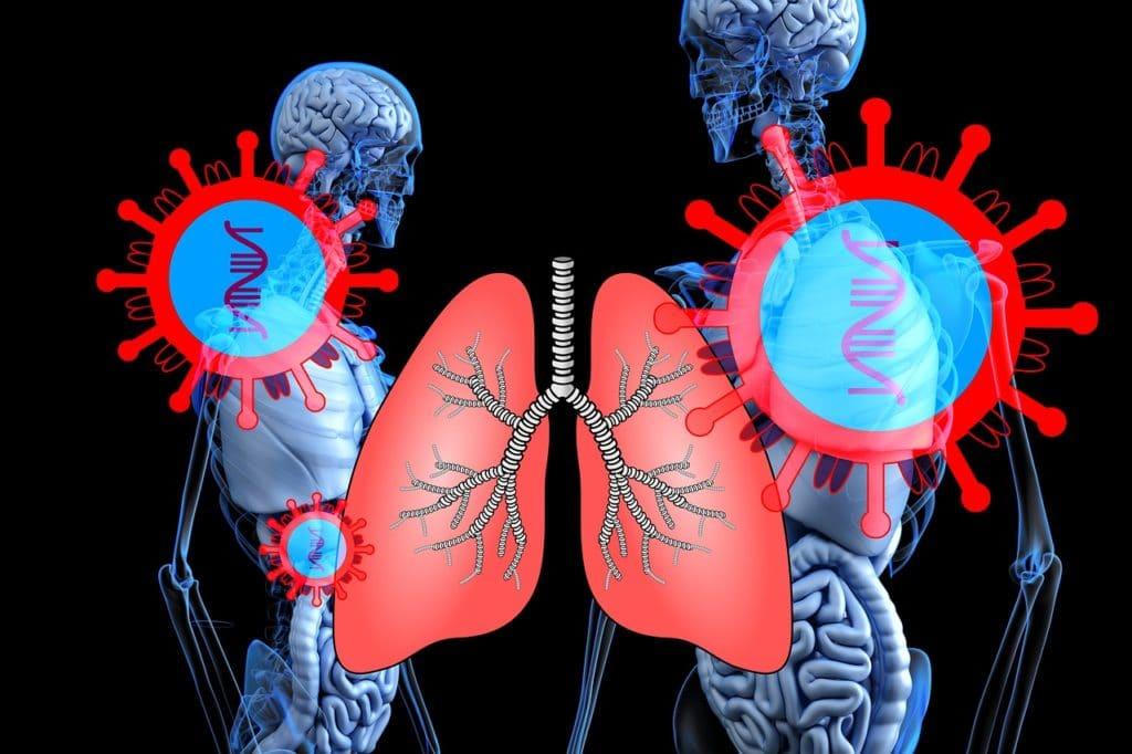 Sistema Respiratorio por Clínica Fuensalud