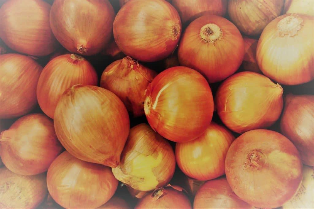 Cebolla de Clínica Fuensalud